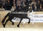 Bestelnummer 150116245 160 Popke fan it Hiem (Norbert x Beart).JPG