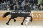 Bestelnummer 150116246 160 Popke fan it Hiem (Thorben x Beart).JPG