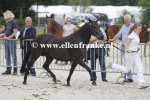 Bestelnummer 280712233 Wicked Pitch Black (Sulaatik's Peter Pan x Marits Mistique).JPG