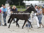Bestelnummer 280712237 Wicked Pitch Black (Sulaatik's Peter Pan x Marits Mistique).JPG