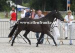 Bestelnummer 280712238 Wicked Pitch Black (Sulaatik's Peter Pan x Marits Mistique).JPG