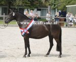 Bestelnummer 280712239 Wicked Pitch Black (Sulaatik's Peter Pan x Marits Mistique).JPG