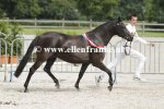 Bestelnummer 280712243 Wicked Pitch Black (Sulaatik's Peter Pan x Marits Mistique).JPG