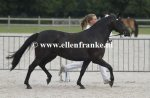 Bestelnummer 270713283 Wicked Pitch Black (Sulaatik's Peter Pan x Marits Mistique).JPG