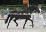 Bestelnummer 270713284 Wicked Pitch Black (Sulaatik's Peter Pan x Marits Mistique).JPG