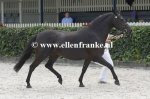 Bestelnummer 270713286 Wicked Pitch Black (Sulaatik's Peter Pan x Marits Mistique).JPG