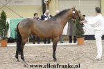 bestelnummer 190211118 comms forest cedrus hoppenhofs luuk x priory prickle.jpg